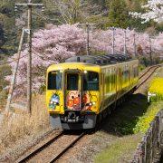 3月ラストは花と列車
